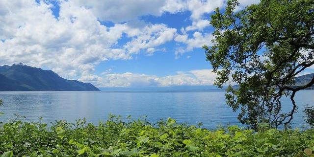 Lassen Sie sich von einer Escodrt Reisebegleitung von Sweet Passion nach Genf begleiten