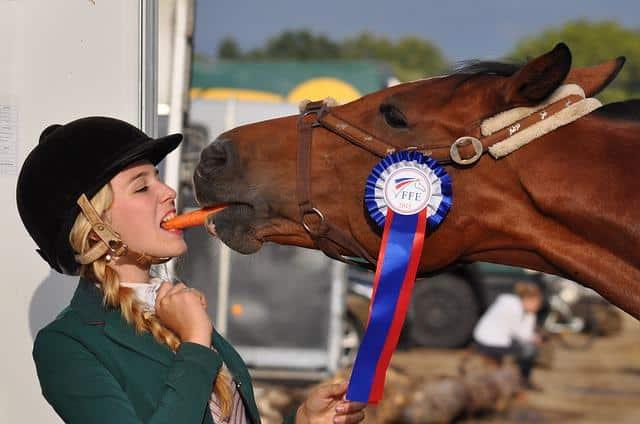 Gehen Sie zum Pferderennen mit einer schönen Lady vom Escort Stuttgart